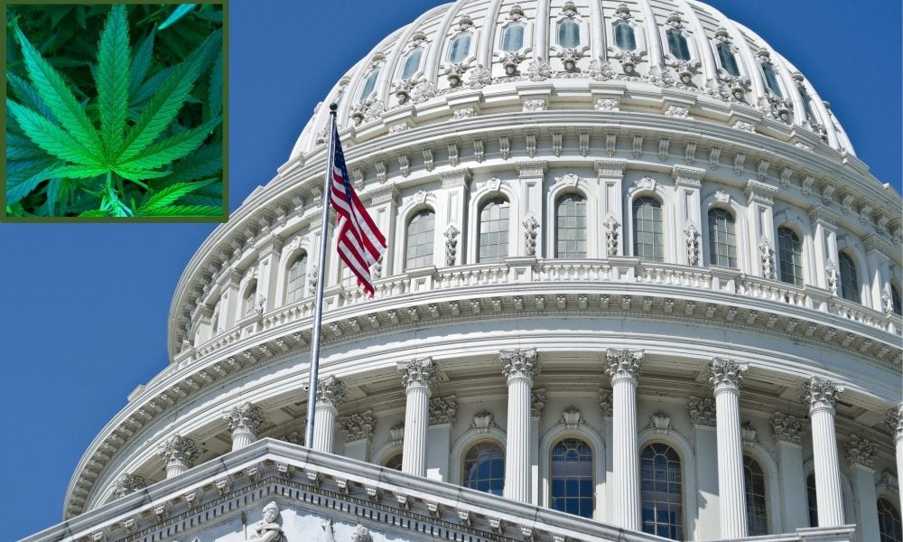 House Includes Marijuana Protections For States, Banks And Universities In Funding Bills