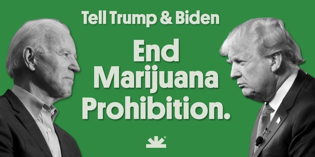 Petition to Biden and Trump: End marijuana prohibition