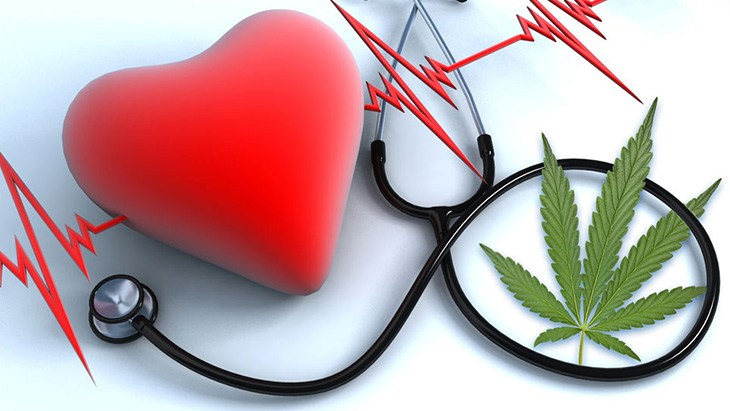 Study: Cumulative Use of Cannabis Not Associate with Heart Abnormalities at Middle Age - NORML