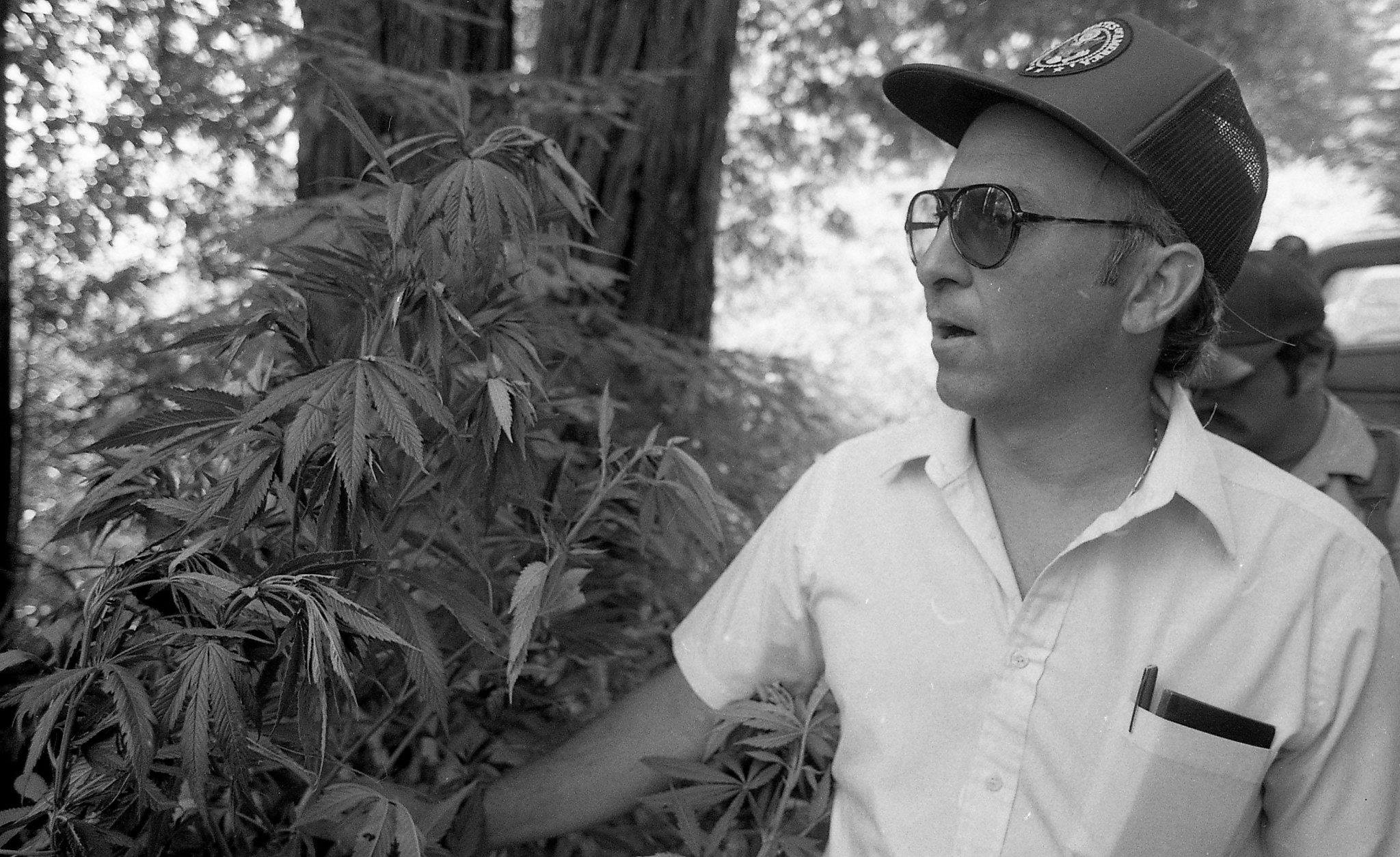 When California declared war on cannabis growers and called in the Army