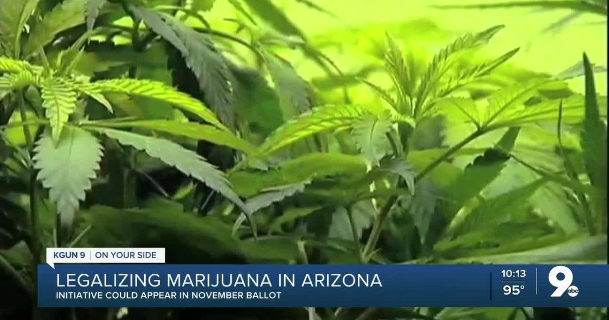Arizona marijuana legalization initiative to be placed on November general election ballot