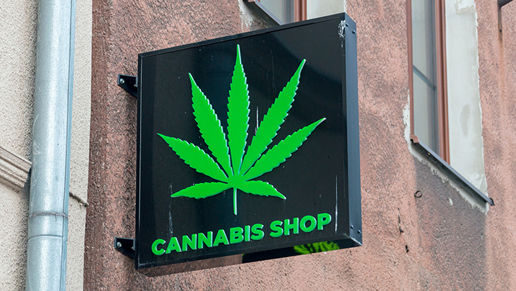 Montana: Adult Use Legalization Initiatives Qualify for November 2020 Ballot - NORML