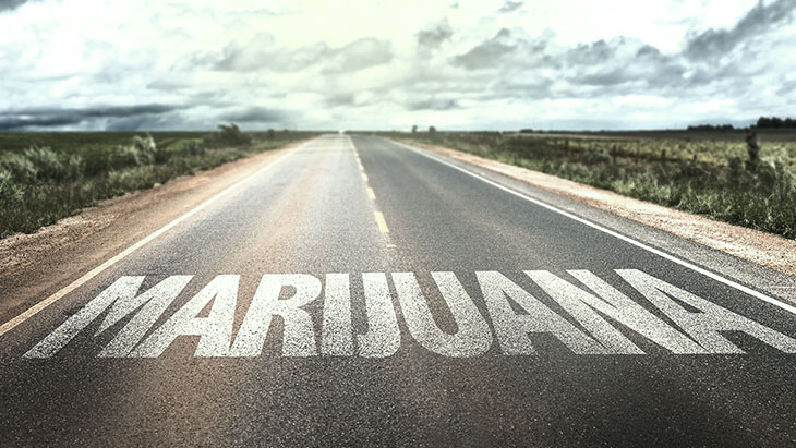 Poll: Support for Legalizing Marijuana Is Bipartisan - NORML