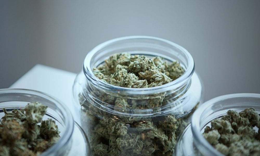 Vermont Marijuana Sales Legalization Bill Caught Up In Spat Over Seat Belt Provision