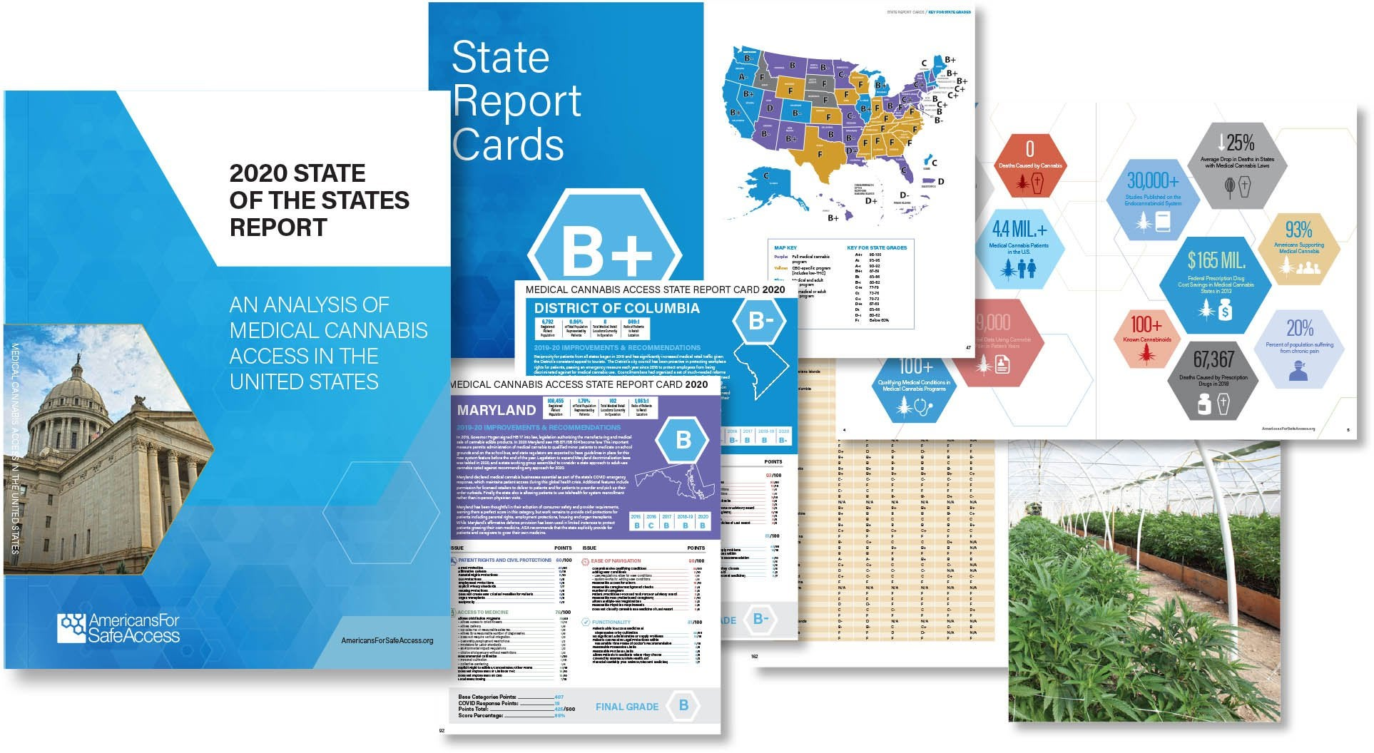 2020 State of the States Medical Cannabis Report Card