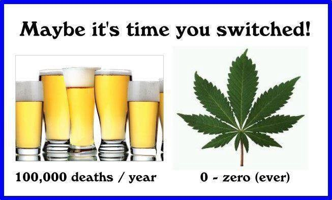 Cannabis is so much safer than alcohol in every way, all the data proves it.