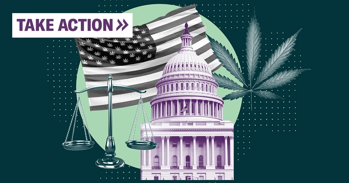 Equitable marijuana reform now → Sign the petition