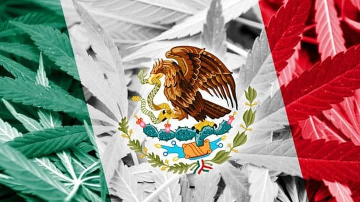 Mexico Moves Forward With Legalized Cannabis. What Will Be The Impact?