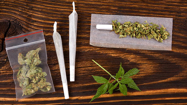Study: Over Three in Four Cannabis Consumers Prefer Flower Over Concentrates - NORML