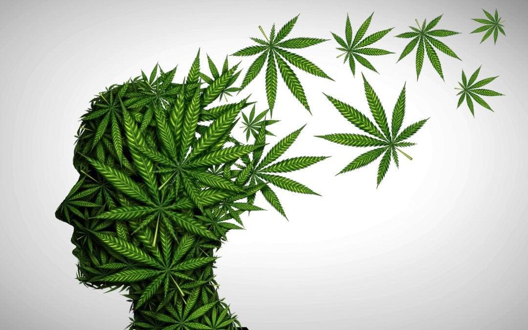 Marijuana and psychosis