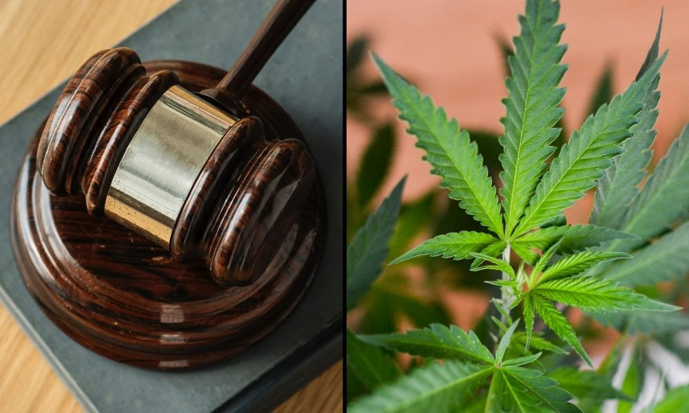 Montana Supreme Court Rejects Challenge To Marijuana Legalization Initiative