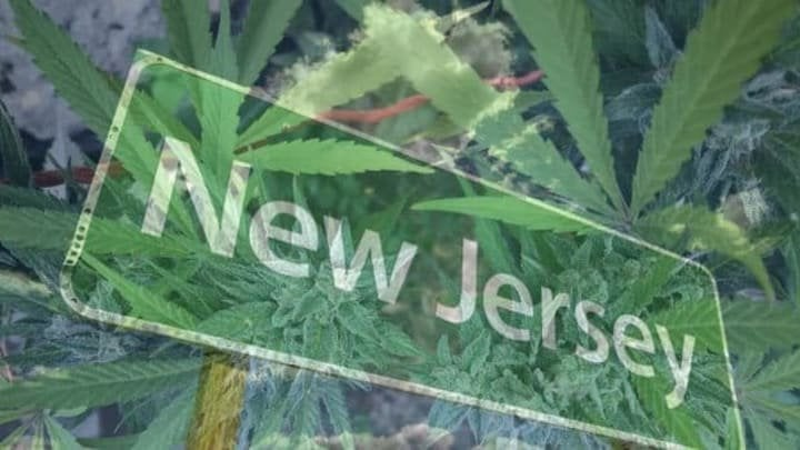 New Jersey Cannabis Group Raises Eyebrows Ahead of November Legalization Vote