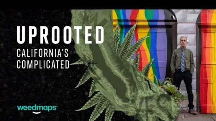 Weedmaps Takes on California's Complex Legal Cannabis Market in Docuseries 'Uprooted'