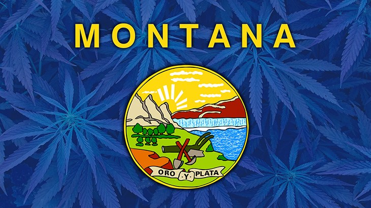 Montanans Vote YES on Marijuana Legalization